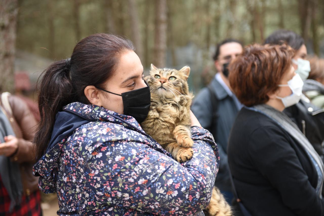 Sokak Hayvanları Gününde Minik Dostlar Unutulmadı