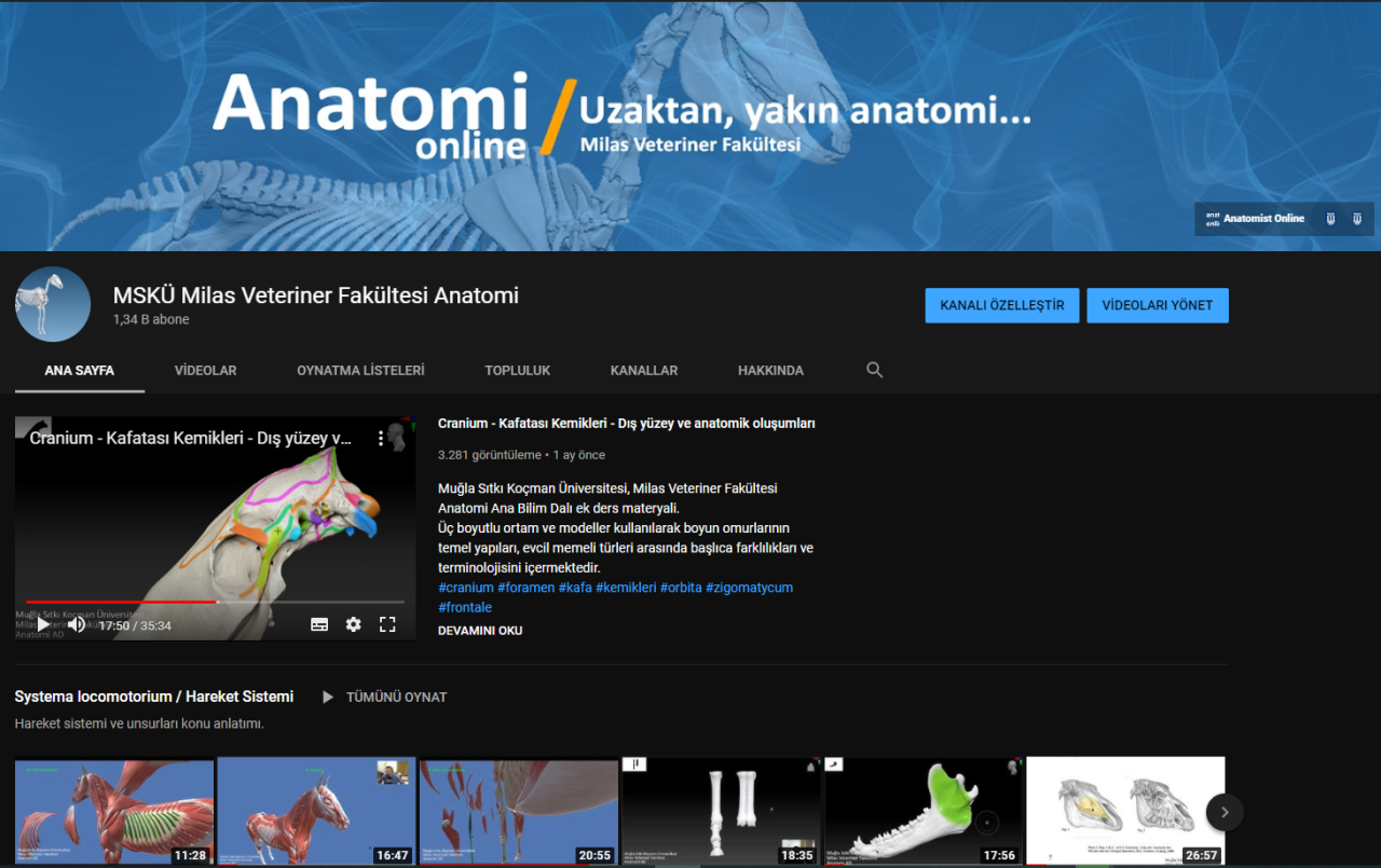 Three-Dimensional Anatomical Modelling: Important Source for Veterinary Candidates in Our Country