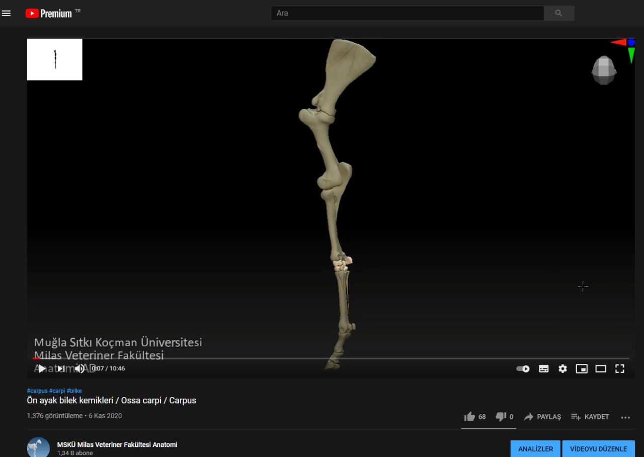 Ülkemizdeki Veteriner Hekim Adaylarına Önemli Kaynak: Üç Boyutlu Anatomik Modelleme